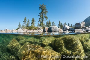 Split view of Trees and Underwater Boulders, Lake Tahoe, Nevada. USA, natural history stock photograph, photo id 32343