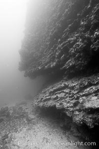 The submerged volcanic cone of Cousins is cut on its sides by ledges and overhangs.  Black and white / grainy.  Cousins