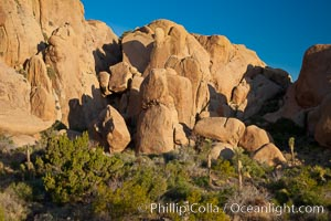 Sunrise on stone boulders, Joshua Tree National Park, desert southwest