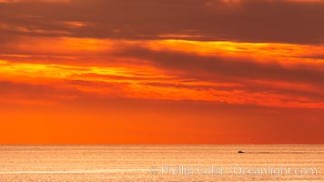 Sunset Clouds over the Pacific Ocean, Del Mar. California, USA, natural history stock photograph, photo id 35096