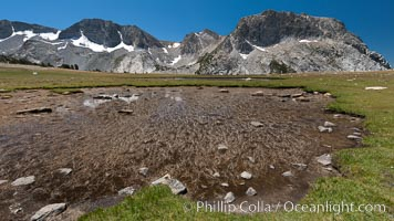 Tadpole tarns, a group of four small ponds on the rise above Evelyn and Townsley Lakes, that are full of tadpoles in late summer.  Fletcher Peak rises to the right, the Cathedral Range to the left, Yosemite National Park, California