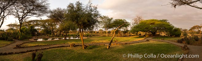 Tawi Lodge, luxury safari lodge, Kenya, Amboseli National Park