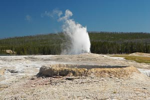 The rim of Teakettle Spring appears in the foreground while Old Faithful erupts in the distance, Yellowstone National Park, Wyoming
