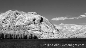 Tenaya Lake and Polly Dome., natural history stock photograph, photo id 23311