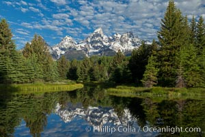 The Grand Tetons, reflected in the glassy waters of the Snake River at Schwabacher Landing, on a beautiful summer morning. Grand Teton National Park, Wyoming, USA, natural history stock photograph, photo id 26917