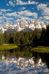 The Grand Tetons, reflected in the glassy waters of the Snake River at Schwabacher Landing, on a beautiful summer morning. Grand Teton National Park, Wyoming, USA, natural history stock photograph, photo id 26933
