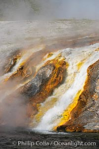 Thermophilac heat-loving bacteria color the runoff canals from Excelsior Geyser as it empties into the Firehole River. Midway Geyser Basin, Yellowstone National Park, Wyoming, USA, natural history stock photograph, photo id 13593