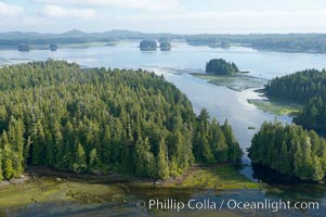 Lemmens Inlet viewed from Meares Island, with Tofino in the distance, aerial photo, on the west coast of Vancouver Island. British Columbia, Canada, natural history stock photograph, photo id 21074