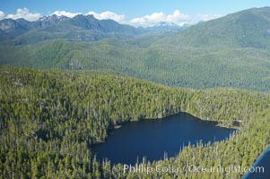 Densely forested Vancouver Island, aerial photo, near Tofino on the west coast of Vancouver Island