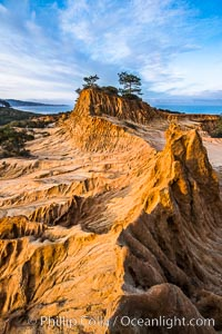 Torrey Pines State Reserve, Broken Hill at Dawn, San Diego, California