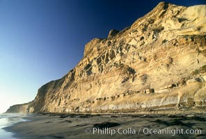Sea cliffs at Torrey Pines State Reserve, San Diego, California