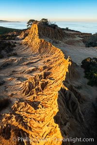 Broken Hill by the first light of dawn, overlooking the Pacific Ocean and Torrey Pines State Reserve. San Diego, California, USA, natural history stock photograph, photo id 36567