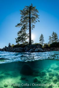 Trees and rocks in Lake Tahoe, Sand Harbor State Park