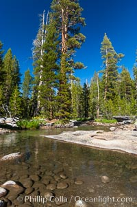 The Tuolumne River in late summer.  Tuolumne Meadows, Yosemite National Park, California