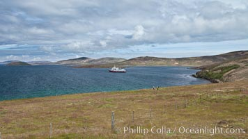 Typical grasslands of the Falkland Islands, a pastoral setting with old wooden fence and rolling fields, icebreaker ship M/V Polar Star at anchor just offshore, New Island