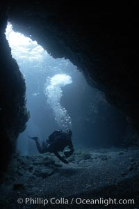 Image 23464, A SCUBA diver enters a submarine cavern at Santa Barbara Island, underwater cave. Santa Barbara Island, California, USA