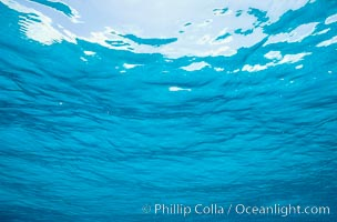 Ocean surface. Bahamas, natural history stock photograph, photo id 00303