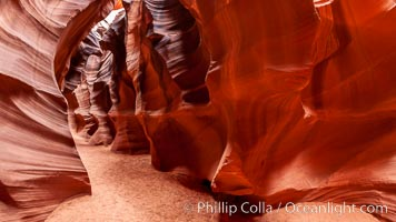 Antelope Canyon, a deep narrow slot canyon formed by water and wind erosion. Navajo Tribal Lands, Page, Arizona, USA, natural history stock photograph, photo id 18004