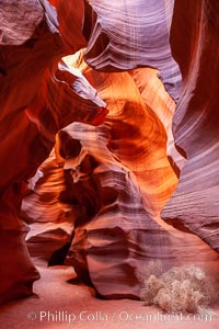 Upper Antelope Canyon slot canyon. Navajo Tribal Lands, Page, Arizona, USA, natural history stock photograph, photo id 26611