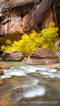 Virgin River Narrows, Zion National Park, Utah