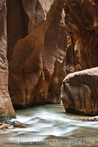 The Virgin River flows through the Zion Narrows, with tall sandstone walls towering hundreds of feet above. Virgin River Narrows, Zion National Park, Utah, USA, natural history stock photograph, photo id 26124