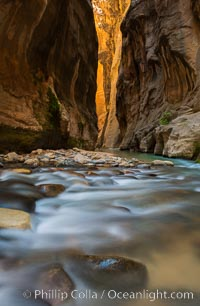 The Virgin River Narrows, where the Virgin River has carved deep, narrow canyons through the Zion National Park sandstone, creating one of the finest hikes in the world. Virgin River Narrows, Zion National Park, Utah, USA, natural history stock photograph, photo id 28582