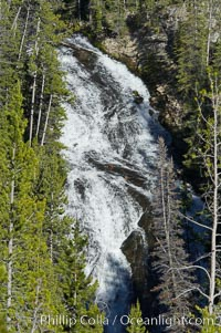 Virginia Cascades is a 60 foot waterfall between Madison and Canyon in Yellowstone National Park. Wyoming, USA, natural history stock photograph, photo id 13302