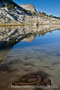 Vogelsang Peak (11500') and the shoulder of Fletcher Peak, reflected in the still morning waters of Fletcher Lake, in Yosemite's gorgeous high country, late summer. Yosemite National Park, California, USA, natural history stock photograph, photo id 25788