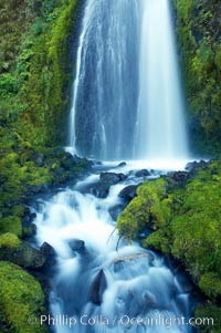 Wahkeena Falls drops 249 feet in several sections through a lush green temperate rainforest, Columbia River Gorge National Scenic Area, Oregon