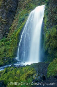 Wahkeena Falls drops 249 feet in several sections through a lush green temperate rainforest. Wahkeena Falls, Columbia River Gorge National Scenic Area, Oregon, USA, natural history stock photograph, photo id 19325