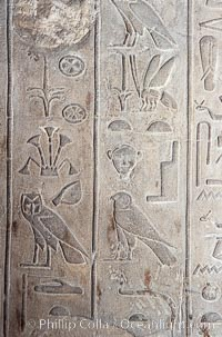 Wall detail with hieroglyphics, Luxor Temple. Egypt, natural history stock photograph, photo id 18479