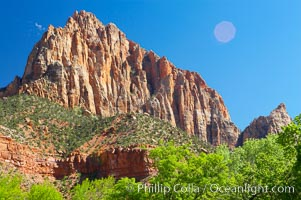 The Watchman, a red Navaho sandstone peak in Zion National Park