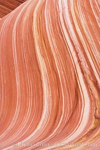 The Wave, an area of fantastic eroded sandstone featuring beautiful swirls, wild colors, countless striations, and bizarre shapes set amidst the dramatic surrounding North Coyote Buttes of Arizona and Utah.  The sandstone formations of the North Coyote Buttes, including the Wave, date from the Jurassic period. Managed by the Bureau of Land Management, the Wave is located in the Paria Canyon-Vermilion Cliffs Wilderness and is accessible on foot by permit only. USA, natural history stock photograph, photo id 20666
