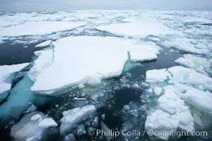 Pack ice and brash ice fills the Weddell Sea, near the Antarctic Peninsula.  This pack ice is a combination of broken pieces of icebergs, sea ice that has formed on the ocean. Southern Ocean, natural history stock photograph, photo id 24913