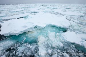 Pack ice and brash ice fills the Weddell Sea, near the Antarctic Peninsula.  This pack ice is a combination of broken pieces of icebergs, sea ice that has formed on the ocean. Southern Ocean, natural history stock photograph, photo id 24916