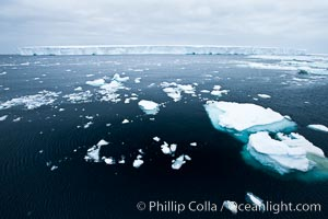 Pack ice and brash ice fills the Weddell Sea, near the Antarctic Peninsula.  This pack ice is a combination of broken pieces of icebergs, sea ice that has formed on the ocean. Southern Ocean, natural history stock photograph, photo id 24917