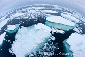Pack ice and brash ice fills the Weddell Sea, near the Antarctic Peninsula.  This pack ice is a combination of broken pieces of icebergs, sea ice that has formed on the ocean. Southern Ocean, natural history stock photograph, photo id 24930