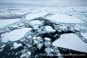 Pack ice and brash ice fills the Weddell Sea, near the Antarctic Peninsula.  This pack ice is a combination of broken pieces of icebergs, sea ice that has formed on the ocean. Weddell Sea, Southern Ocean, natural history stock photograph, photo id 24840