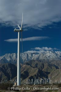Wind turbines provide electricity to Palm Springs and the Coachella Valley. San Gorgonio pass, San Bernardino mountains. San Gorgonio Pass, Palm Springs, California, USA, natural history stock photograph, photo id 06898