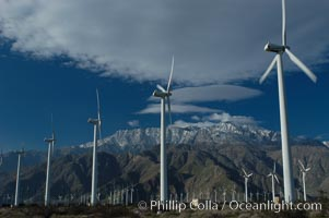 Wind turbines provide electricity to Palm Springs and the Coachella Valley. San Gorgonio pass, San Bernardino mountains. San Gorgonio Pass, Palm Springs, California, USA, natural history stock photograph, photo id 06906