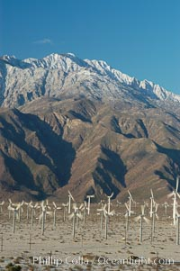 Wind turbines provide electricity to Palm Springs and the Coachella Valley. San Gorgonio pass, San Bernardino mountains. San Gorgonio Pass, Palm Springs, California, USA, natural history stock photograph, photo id 06910