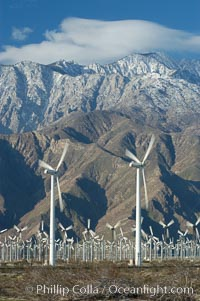 Image 06891, Wind turbines provide electricity to Palm Springs and the Coachella Valley. San Gorgonio pass, San Bernardino mountains. San Gorgonio Pass, California, USA, Phillip Colla, all rights reserved worldwide. Keywords: california, coachella valley, desert, electricity, energy, palm springs, power generation, san gorgonio pass, san gorgonio pass wind farm, science and technology, usa, wind farm, wind power, wind turbine, windmill.