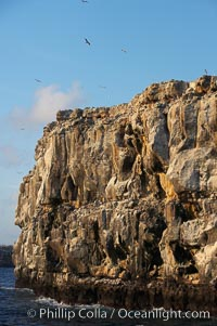 Seacliffs, home of many seabirds, Wolf Island