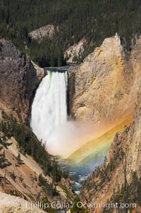 A rainbow appears in the mist of the Lower Falls of the Yellowstone River.  A long exposure blurs the fast-flowing water.  At 308 feet, the Lower Falls of the Yellowstone River is the tallest fall in the park.  This view is from the famous and popular Artist Point on the south side of the Grand Canyon of the Yellowstone.  When conditions are perfect in midsummer, a morning rainbow briefly appears in the falls, Yellowstone National Park, Wyoming