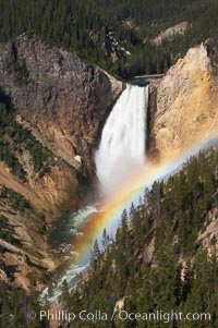 A rainbow appears in the mist of the Lower Falls of the Yellowstone River.  At 308 feet, the Lower Falls of the Yellowstone River is the tallest fall in the park.  This view is from Lookout Point on the North side of the Grand Canyon of the Yellowstone.  When conditions are perfect in midsummer, a midmorning rainbow briefly appears in the falls. Grand Canyon of the Yellowstone, Yellowstone National Park, Wyoming, USA, natural history stock photograph, photo id 13323