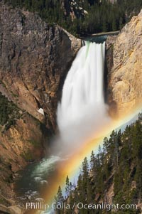 A rainbow appears in the mist of the Lower Falls of the Yellowstone River.  At 308 feet, the Lower Falls of the Yellowstone River is the tallest fall in the park.  This view is from Lookout Point on the North side of the Grand Canyon of the Yellowstone.  When conditions are perfect in midsummer, a midmorning rainbow briefly appears in the falls. Grand Canyon of the Yellowstone, Yellowstone National Park, Wyoming, USA, natural history stock photograph, photo id 13324