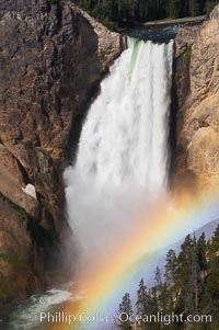 A rainbow appears in the mist of the Lower Falls of the Yellowstone River.  At 308 feet, the Lower Falls of the Yellowstone River is the tallest fall in the park.  This view is from Lookout Point on the North side of the Grand Canyon of the Yellowstone.  When conditions are perfect in midsummer, a midmorning rainbow briefly appears in the falls. Grand Canyon of the Yellowstone, Yellowstone National Park, Wyoming, USA, natural history stock photograph, photo id 13327