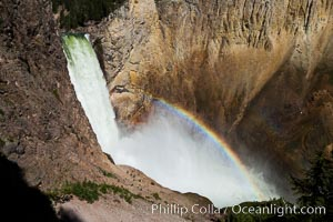 Yellowstone Falls from Uncle Tom's Trail.  Lower Yellowstone Falls shows a beautiful rainbow as it cascades 308' in a thundering plunge into the Grand Canyon of the Yellowstone River, Yellowstone National Park, Wyoming