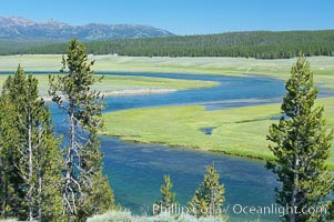 The Yellowstone River flows through the Hayden Valley, Yellowstone National Park, Wyoming