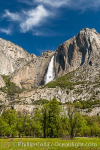 Yosemite Falls and Cooks Meadow in spring, Yosemite National Park